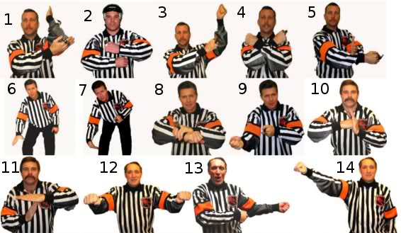 Retrieved from: http://www.sporcle.com/games/sevorak/nhl_signals