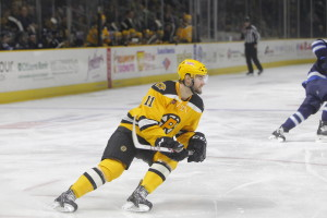 Tyler Randell (Photo: Providence Bruins)